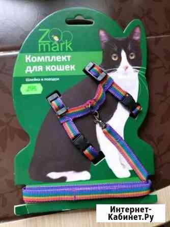 Комплект для кошек шлейка и поводок Лабытнанги