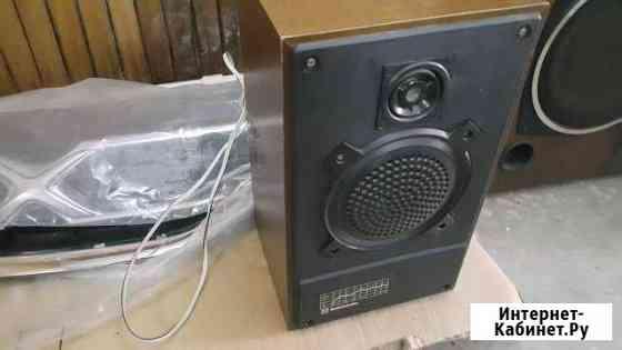 Колонки Радиотехника S-30 Магадан