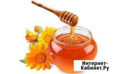 Мед летний Григорополисская