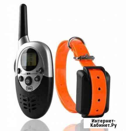 Электронные ошейники для собак, антилай, GPS Петропавловск-Камчатский