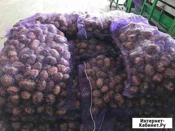 Сетка-мешок на рулоне (Сетка-рашель) Тамбов Тамбов