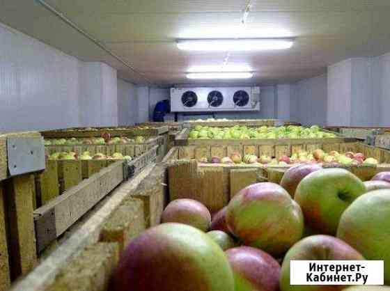 Пром холодильное оборудование для овощехранилищ Нальчик