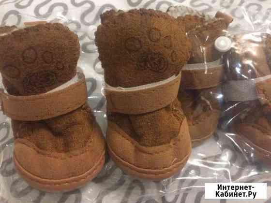 Обувь для собак Железнодорожный