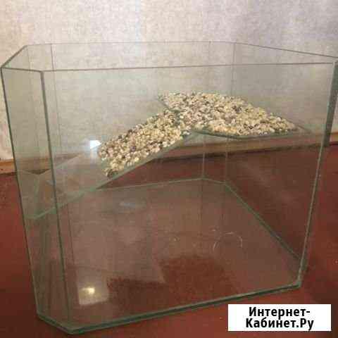 Аквариум Ноябрьск