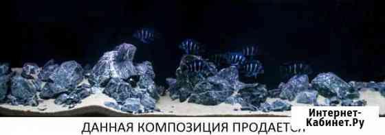 Камни и грунт в аквариум Москва