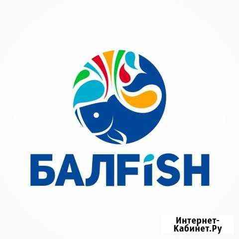 Оператор 1С Балаково