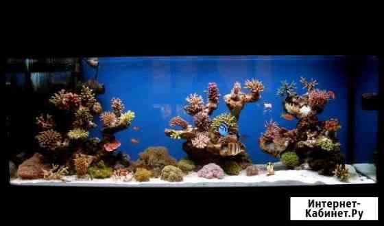 Соль для морского аквариума Marine Life reef salt Челябинск