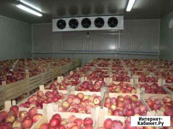 Яблокохранилища, Овощехранилища Под ключ Нальчик