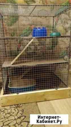 Продается клетка для грызунов в Находке Находка
