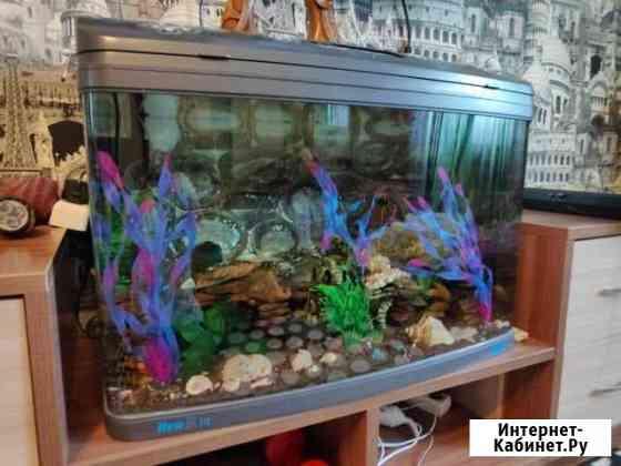 Аквариум Jebo R375 140 литров запущенный с рыбой Братск