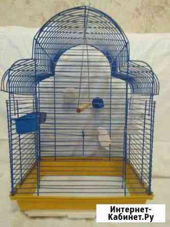 Клетка для попугаев Иваново