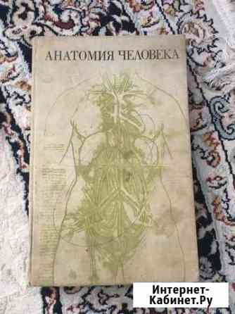 Анатомия Грозный