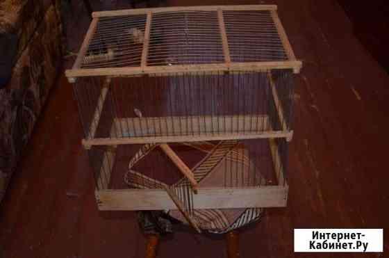 Клетка для хомяка или птицы Архангельск