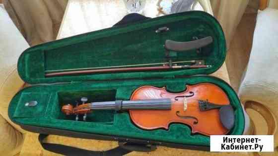 Скрипка Великий Новгород
