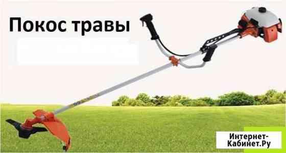 Скосить траву Калининград