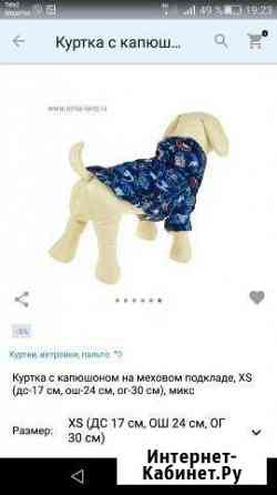 Куртка для собаки Когалым