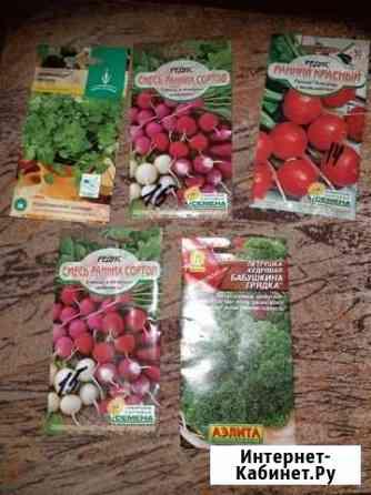 Семена Нерюнгри