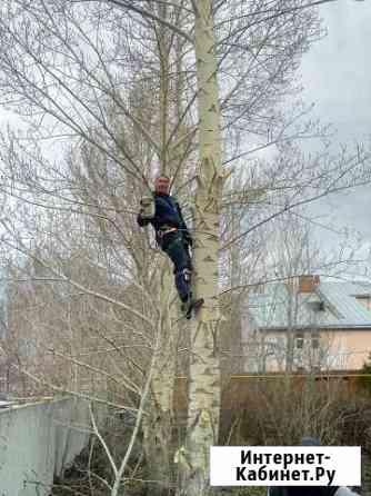Кронирование и спил деревьев Омск