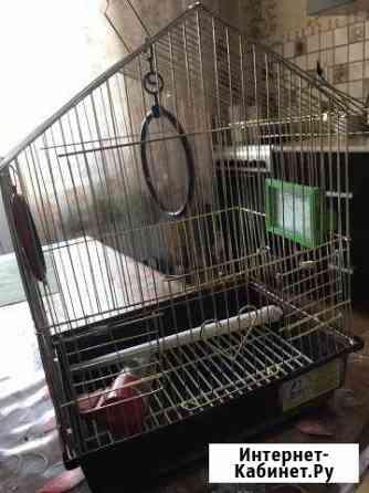 Клетка для попугая Петрозаводск