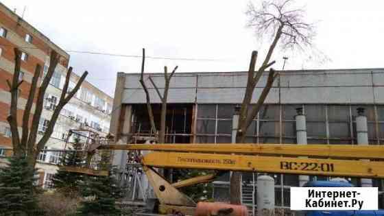 Опиловка и спиливание деревьев, расчистка участка Нижний Кисляй