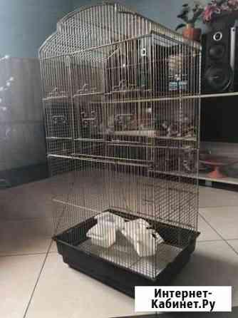 Большая клетка для птиц Великие Луки