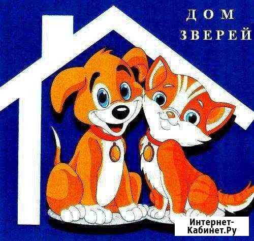 Вет.помощь 24/7, гостиница для животных, стрижка Норильск