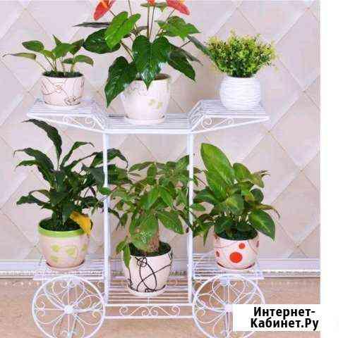 Полка для цветов Анучино
