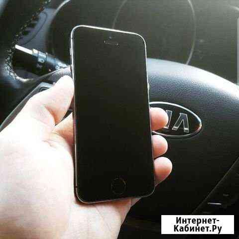 iPhone 5s Шадринск