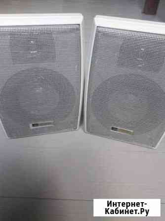 Колонки акустические Australian monitor install 10 Брянск