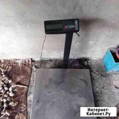 Веса электронные до 600 кг Славгород