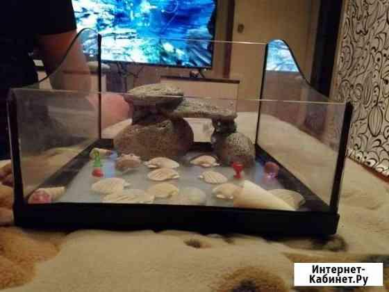 Продам акварюм Череповец