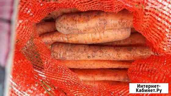 Продам морковь арзамасс Арзамас