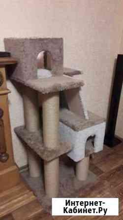 Домик для кошки Барнаул