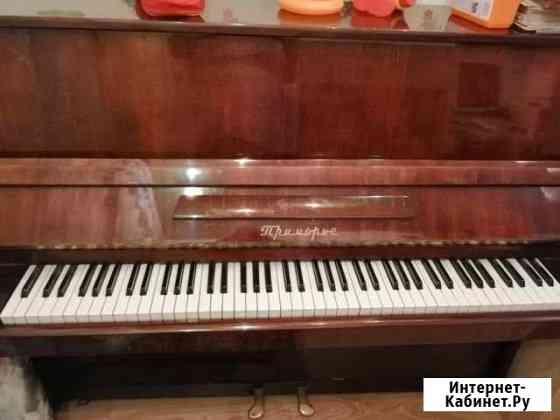 Пианино приморье Чита
