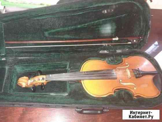 Скрипка Липецк