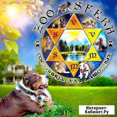 Зоосфера гостиница для собак и кошек Калининград