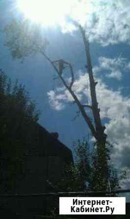 Юрьев-Польский р-н Спилить дерево. Спил деревьев.О Юрьев-Польский