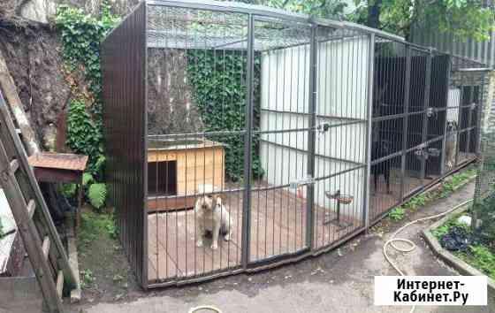 Зоо гостиницы для животных на кмв Пятигорск