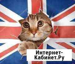 Английский по Скайп, Ватсапп с опытным репетитором Томск