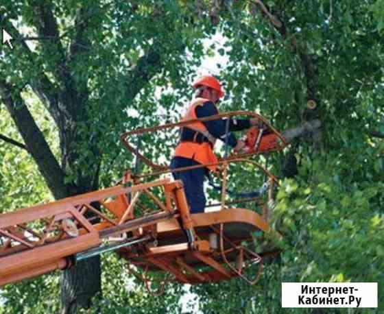 Спил деревьев Кропоткин