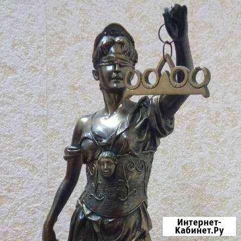 Адвокат: профессиональная помощь Александров