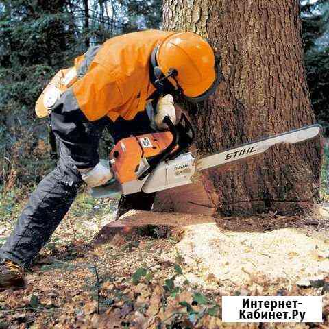 Спил деревьев Челябинск