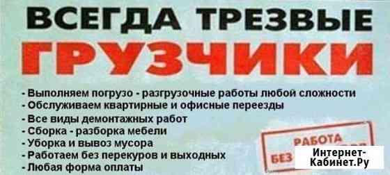 Бригада опытных грузчиков выполнит Санкт-Петербург