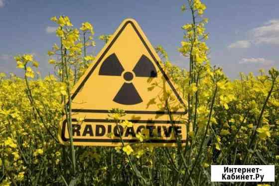 Проверка замер измерение радиации Дозиметр Ростов-на-Дону