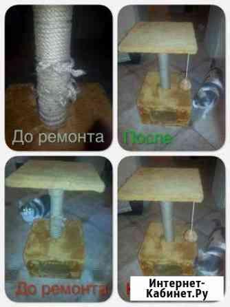Ремонт Когтеточки Брянск
