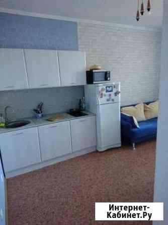 1-комнатная квартира, 46 м², 11/25 эт. Пермь