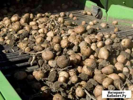 Продам сельхозпредприятие, производственная база, кфх, выращивание картофеля Кемерово