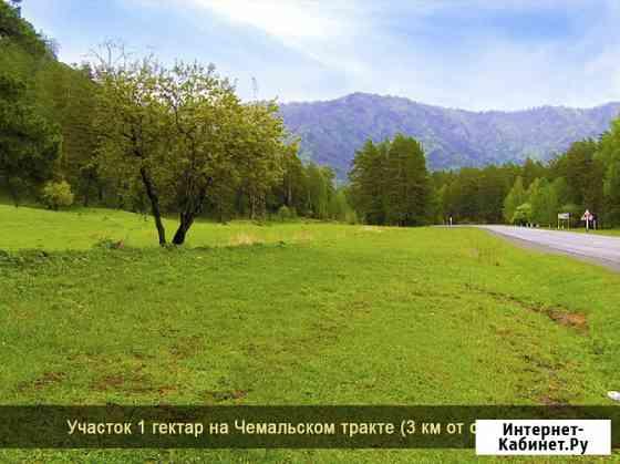 Участок 100 сот. Горно-Алтайск