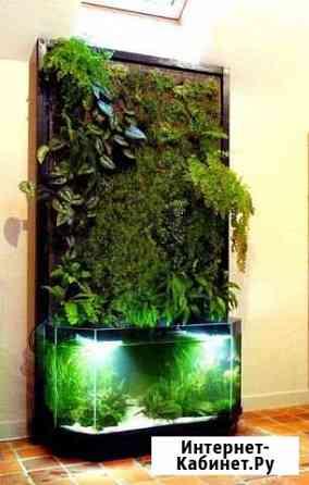 Озеленение аквариума Белгород