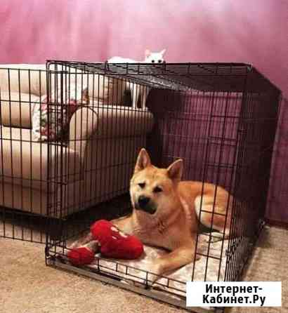 Клетка для собак кошек Белгород
